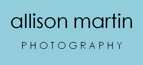 Allison Martin Photography logo